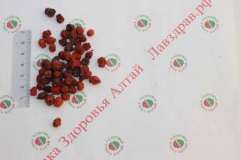 Рябина плод красный (арония), 100 г